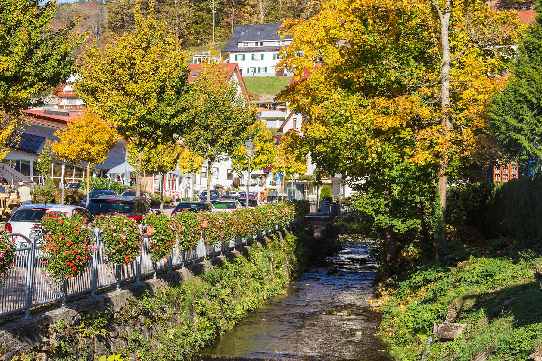 Ferienwohnung Heidi Kimmig Bad Peterstal Griesbach